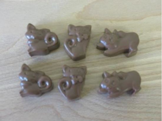 Picture of Chocolate Cats