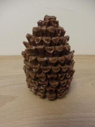Picture of Pine Cones