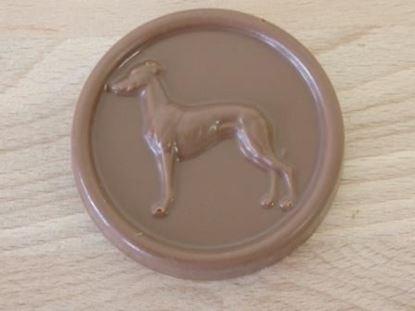 Sighthound; Greyhound; Whippet